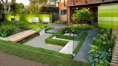 Photo of Modern Gardens – The Innovations Within
